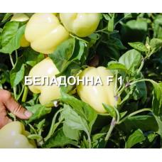 Перец Беладонна